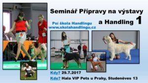 seminar pripravy na vystavy a handling, vystavy psu, vystavni postoj