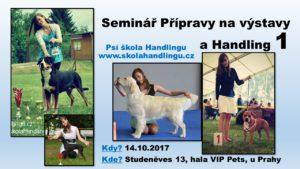 seminar pripravy na vystavy psu a handling psu